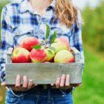 Model anunt evenimente agricole posibil pe www.zago.ro