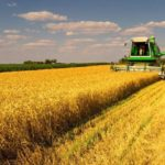 Model anunt pentru terenuri agricole posibil pe www.zago.ro